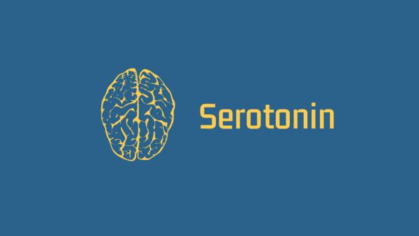Serotonin blog header