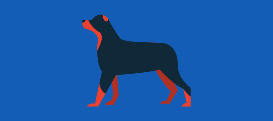 Black and red dog on a blue background