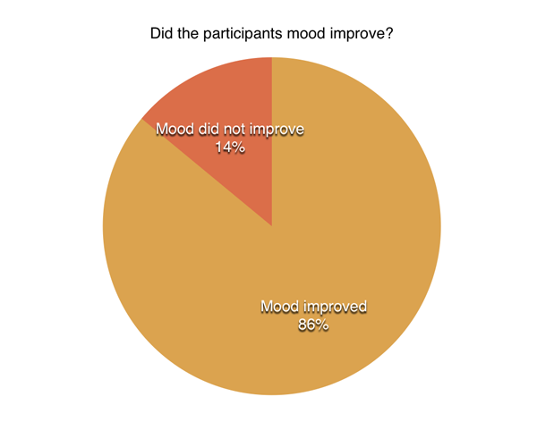 30-Day Challenge mood pie chart